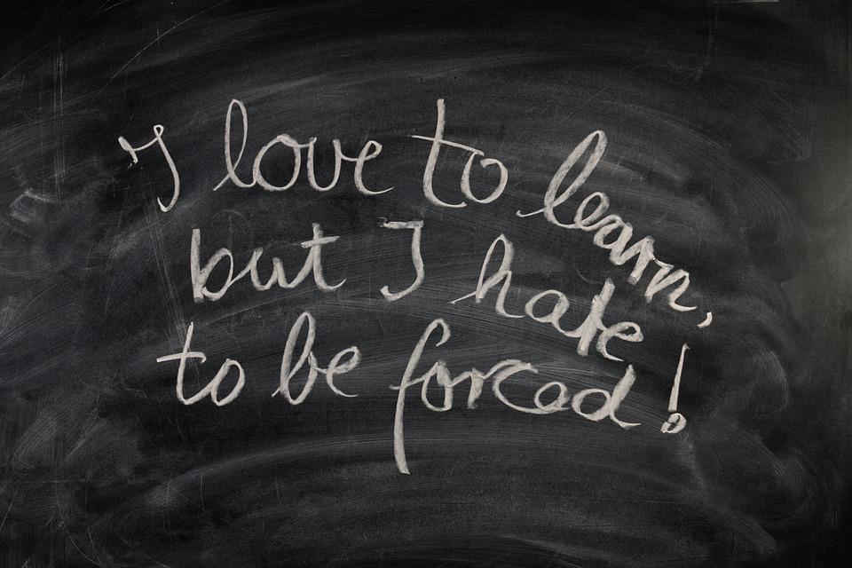 Amo imparare ma odio essere forzato!