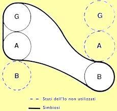 Grafico simbiosi di primo ordine